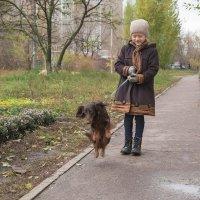 """... А люди посмотрят и скажут - собаки летят - вот  и осень... "" :: Елена Ахромеева"