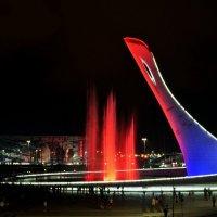 Олимпийский факел :: Светлана Винокурова