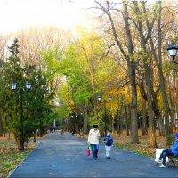 Отдых в осеннем парке... :: Тамара (st.tamara)