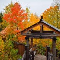 Осень в Плесе :: Марина Богданова
