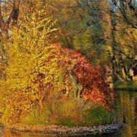 Осенняя Сказка... :: Sergey Gordoff