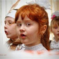 Оранжевые дети :: Сергей Порфирьев