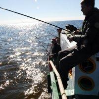 ... удачная рибалка, 1 :: Kostas Slivskis