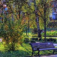 Краски осени... :: Владимир Бровко