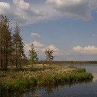 На берегу Великого озера. :: Aleksandr Ivanov67 Иванов