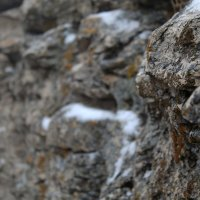 Стрельная гора :: Юлия Сова