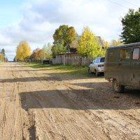 Улица в лесном поселке... :: Александр Широнин