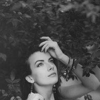 Kate Frost :: Ilgar Gracie