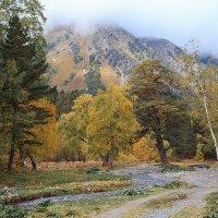 Осень в Архызе :: Леонид Сергиенко