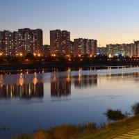 Вид на Братеево с набережной парка 850-летия Москвы. :: Татьяна Помогалова