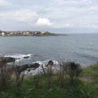 Море :: Светлана Ященко
