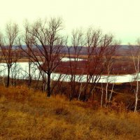 Замерзает речка Пёра... :: Милла Корн