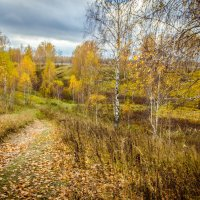 Вглубь осени... :: Алексей Ковынев
