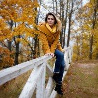 Осень :: Светлана Мокрушина