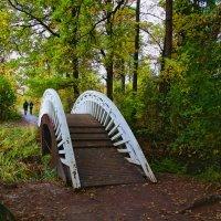 мостик :: Laryan1