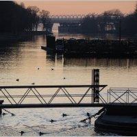 Ноябрьский вечер на Большой Невке. Вид с 3-го Елагина моста :: sv.kaschuk