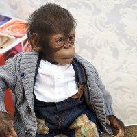 авторский образ-обезьянка-кукла :: Олег Лукьянов