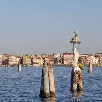 Италия - по дороге в Венецию :: ДмитрийМ Меньшиков