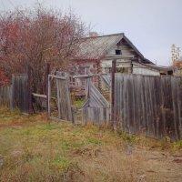 Старый дом...Деревня...Осень... :: Елена Ярова