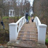 Горбатый мостик. :: Oleg4618 Шутченко