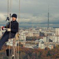 Илюша на работе! :: Екатерина Саблина