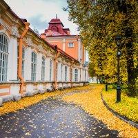 Питерская осень :: Олеся Семенова