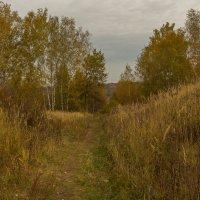 Осенняя дорожка :: Александра
