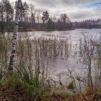 Поздняя осень семнадцатого года 2 :: Андрей Дворников