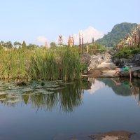Таиланд, парк Нонг НУч :: ДмитрийМ Меньшиков