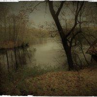 Все прозрачнее осень... :: Эви и Владимир [][]][]]]]]