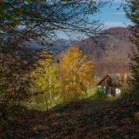Осенним утром. :: Владимир Лобанов