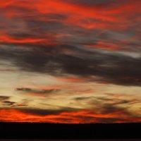 Закат над озером Мичиган. :: Алена Торопов