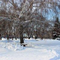 Зима в сибире :: раиса Орловская