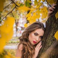 муза Осени :: Екатерина Музыченко