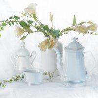 Про кофе и цветы :: mrigor59 Седловский