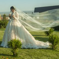 Невеста :: Евгений Khripp