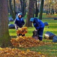 После Золотой осени... :: Sergey Gordoff