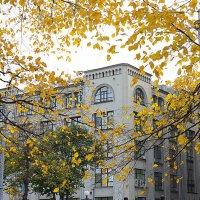кружит шёпотом листва :: Олег Лукьянов