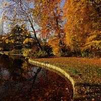 Краски ноября :: Alexander Andronik