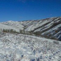 начало зимы :: lev