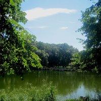 Летом на озере :: Елена Семигина