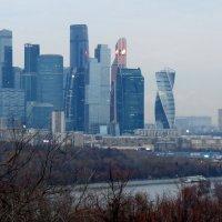 Москва - Сити :: Светлана