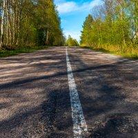 Дорога домой :: Владимир Лазарев