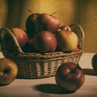 Яблоки :: Милоцвета (Александра Баранова)