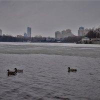 Город без людей. :: Лариса Красноперова