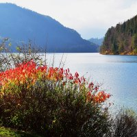На озере :: Николай Танаев