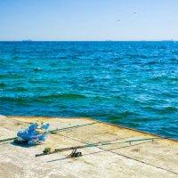Ловись рыбка, велика и мала!.. :: Вахтанг Хантадзе
