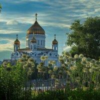 Музеон. :: Александр Бабаев