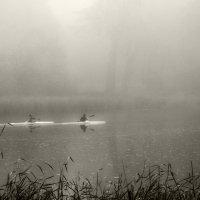 Через тернии к звездам: в густом тумане, по реке, сплошь усыпанной листьями :: Валентина Данилова