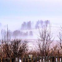 туман. :: petyxov петухов